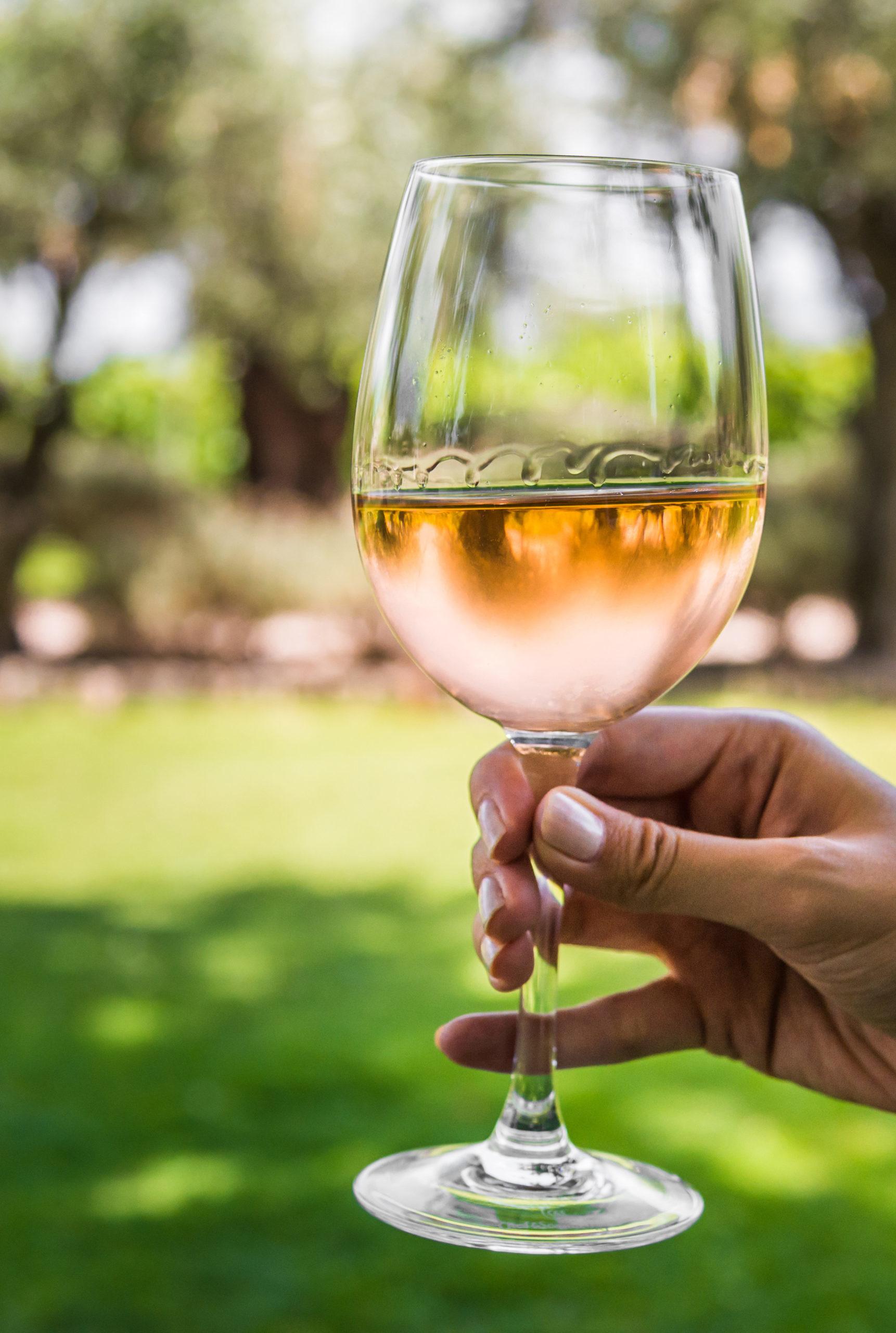 Marque Vendôme - sélection de vins gris 2020