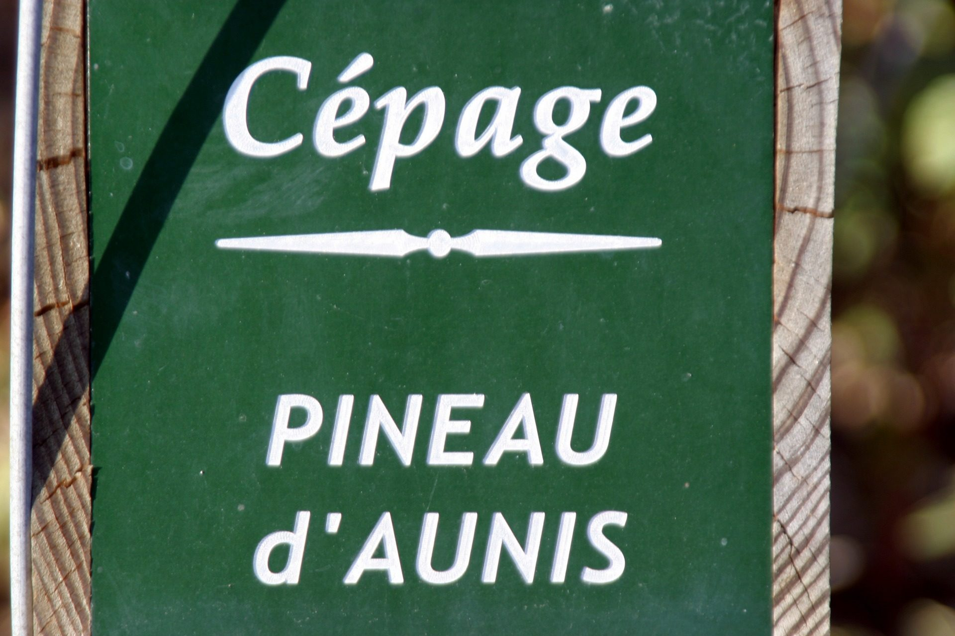Pineau d'aunis - Vendôme