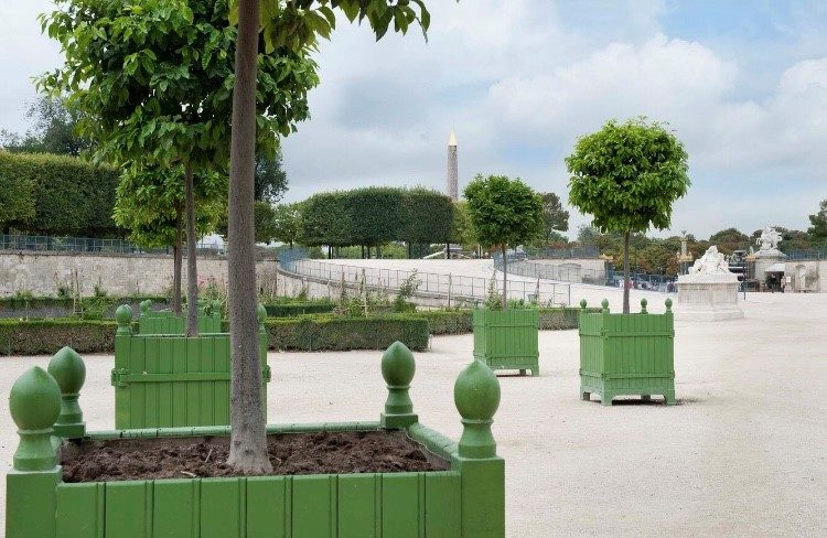 Caisses à orangers / REI - Les jardins du roi soileil
