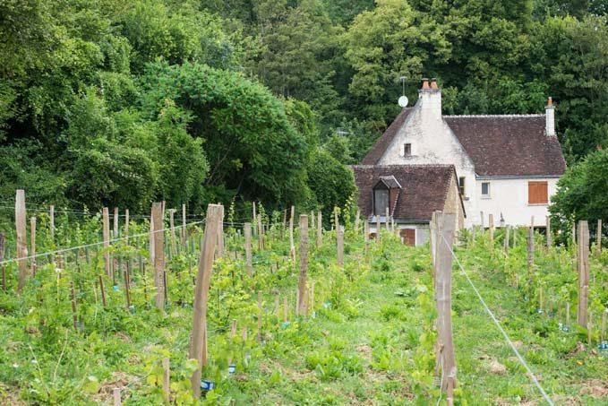 Village troglodyte de Trôo © Laurence Mary